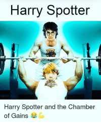 Harry Potter, Memes, and 🤖: Harry Spotter  Harry Spotter and the Chamber  of Gains Tag a Harry Potter fan