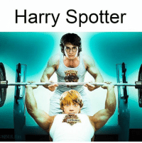 Memes, 🤖, and Harry: Harry Spotter  OMIN Harry Spotter and the Chamber of Gains 😂💪