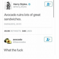 Funny, Meme, and Avocado: Harry Styles.  @Harry_Styles  Avocado ruins lots of great  sandwiches.  04/04/2012, 20:51  45.9K RETWEETS 34K LIKES  avocado  @itsavocados  What the fuck Still the best @_kevinboner