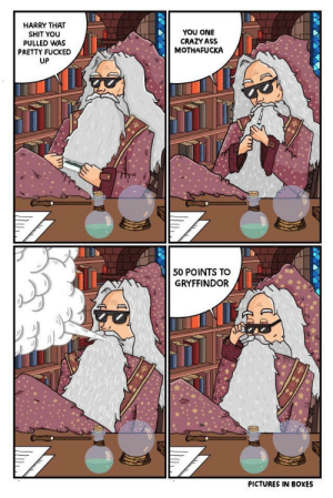 Ass, Crazy, and Funny: HARRY THAT  SHIT YOU  PULLED WAS  PRETTY FUCKED  UP  YOU ONE  CRAZY ASS  MOTHAFUCKA  50 POINTS TO  GRYFFINDOR  PICTURES IN BOXES I feel like this happened in every single book via /r/funny https://ift.tt/2PZRF2l
