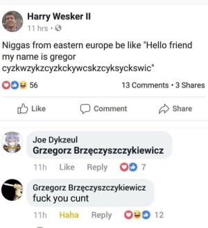 "Be Like, Fuck You, and Hello: Harry Wesker II  11 hrs  go  Niggas from eastern europe be like ""Hello friend  my name is gregor  cyzkwzykzcyzkckywcskzcyksyckswic""  13 Comments 3 Shares  56  Like  Share  Comment  Joe Dykzeul  Grzegorz Brzęczyszczykiewicz  7  Reply  Like  11h  Grzegorz Brzęczyszczykiewicz  fuck you cunt  12  Haha  11h  Reply srsfunny:  Eastern Europe"