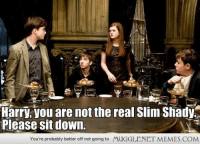 """Memes, The Real Slim Shady, and Http: Harry, you are not the real Slim Shady  Please sit down.  You're probably better off not going to  MUGGLENET MEMES.COM <p>The REAL Slim Harry. <a href=""""http://ift.tt/17ZSF8R"""">http://ift.tt/17ZSF8R</a></p>"""