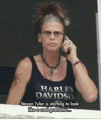 Tyler: HARTLEY  DAVIDSO  Steven Tyler is starting to look  like a cool  grandma