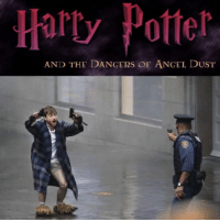 Funny, Angel, and Potter: Harty Potter  AND THE DANGERS OF ANGEL DUST Yer Under Arrest Harry