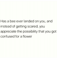 Confused, Memes, and Thank You: Has a bee ever landed on you, and  instead of getting scared, you  appreciate the possibility that you got  confused for a flower Thank you 🐝🌸 Follow @suckstobeyouhun @suckstobeyouhun @suckstobeyouhun
