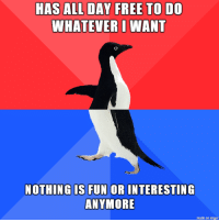 Free, Imgur, and Fun: HAS ALL DAY FREE TO DO  WHATEVER I WANT  NOTHING OS FUN OR INTERESTING  ANYMORE  made on imgur Sigh