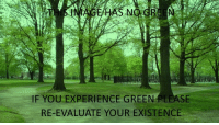 Reddit, Experience, and Gre: HAS NO.GRE N  IF YOU EXPERIENCE GREEN PLEASE  RE-EVALUATE YOUR EXISTENCE [Src]