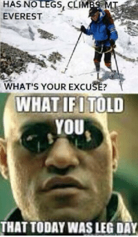 Valid.: HAS NO LEGS, CLIM  MT  EVEREST  WHAT'S YOUR EXCU  WHAT IFI TOLD  YOU  THAT TODAY WASLEG DAY Valid.
