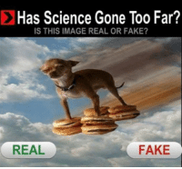 Fake, Image, and Science: Has Science Gone Too Far?  IS THIS IMAGE REAL OR FAKE?  REAL  FAKE