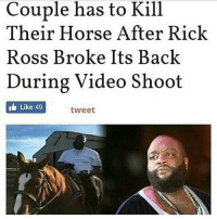 broke: has to Kill  Couple Their Horse After Rick  Ross Broke Its Back  During Video Shoot  Like 49  tweet
