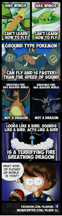 PokeLogic that we Understand but Doesn't Make Sense: HAS WINGS  HAS WINGS  CAN'T LEARN  CAN'T LEARN  HOW TO FLY  HOW TO FLY  GROUND TYPE POKEMON  CAN FLY AND IS FASTER  THAN THE SPEED OF SOUND  BREATHES FIR  BREATHES FIR  HAS MASSIVE WINGS HAS MASSIVE WINGS  NOT A DRAGON  NOT A DRAGON  LOOKS LIKE A BIRD, SOUNDS  LIKE A BIRD, ACTS LIKE A BIRD  IS A TERRIFYING FIRE  BREATHING DRAGON  WHAT KIND  OF FUCKED  UP WORLD  IS THIS?!  FACEBOON.coMNLADEMC f  MEMECENTER CONVVLADE  MC PokeLogic that we Understand but Doesn't Make Sense