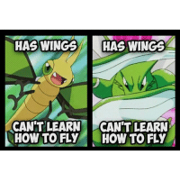 Pokemon logic at its finest! 👍 Sent in by FunnyPokemonAmbassador @Stevenuniverse_drawing_fandom & @masteryolo546 ! Thanks! ___________ Want to become an official Funny Pokemon Ambassador too? Then DM us your best and funniest pokemon memes to feature 😀 ___________ pokemon nintendo anime art logic likeme pokemon20 Disney instagood videogames comics pikachu meme draw dankmemes pokemoncards followme pokemontcg dank pokemongo charizard pokemonmemes lol cartoon dragon litten popplio rowlet: HAS WINGS  HAS WINGS  CANT LEARN  CAN'T LEARN  HOW TO FLY HOW TO FLY Pokemon logic at its finest! 👍 Sent in by FunnyPokemonAmbassador @Stevenuniverse_drawing_fandom & @masteryolo546 ! Thanks! ___________ Want to become an official Funny Pokemon Ambassador too? Then DM us your best and funniest pokemon memes to feature 😀 ___________ pokemon nintendo anime art logic likeme pokemon20 Disney instagood videogames comics pikachu meme draw dankmemes pokemoncards followme pokemontcg dank pokemongo charizard pokemonmemes lol cartoon dragon litten popplio rowlet
