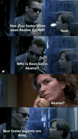 Anime, Parents, and Yeah: Has your foster mom  seen Akame Ga Kill?  Yeah  Who is Best Girl in  Akame?  Akame?  Your foster parents are  dead Everyone knows it's Esdeath