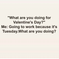 "Memes, 🤖, and Are You Doing: hat are you doing for  Valentine's Day?""  Me: Going to work because it's  Tuesday. What are you doing?"