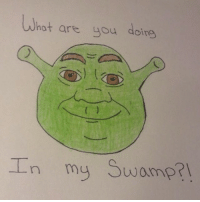 A beautiful portrait drawn by a dedickated fan, @acro_cat3 💚: hat are you doing  In my swamp? A beautiful portrait drawn by a dedickated fan, @acro_cat3 💚