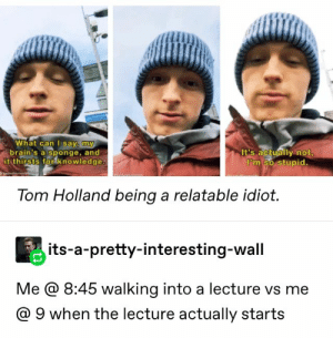 Relatable, Idiot, and Knowledge: hat can l say, my  rain's a sponge, an  it thirsts for knowledge  It's actually not  I°m so stupid.  Tom Holland being a relatable idiot.  its-a-pretty-interesting-wall  Me @ 8:45 walking into a lecture vs me  @ 9 when the lecture actually starts