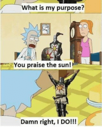 It's funny because I like dark souls I love rick and morty-doc: hat is my purpose?  ou praise the sun!  Damn right, I DO!!! It's funny because I like dark souls I love rick and morty-doc