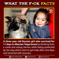 Russian Girl: HAT THE FCK FACTS  FACTS  mage source  Wwww.quoracom  A three year old Russian girl who survived for  11 days in Siberian Taiga forest by drinking from  a creek and eating berries while being protected  by her dog which went to get help after nine days  and returned with rescuers.  Ed @WhatTheF Facts  @WhatTheF Fact  FB.com/What TheFacts