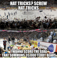 Logic, Memes, and National Hockey League (NHL): HAT TRICKS? SCREW  HAT TRICKS  HERSH  MATE  nhl ref logic  25  ptur (ookin  0r  IWANNA SCORE THEGOAL  THAT SUMMONS 35000 TEDDY BEARS Imagine being the away goalie and letting in a goal and getting hit by 10,000 bears as you're trying to get to the bench