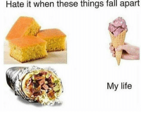 Fall, Life, and Dank Memes: Hate it when these things fall apart  My life