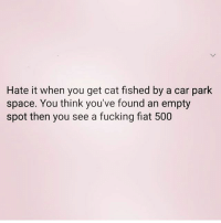 Catfished, Fucking, and Memes: Hate it when you get cat fished by a car park  space. You think you've found an empty  spot then you see a fucking fiat 500 I'm the catfish 🙋🏼‍♀️😂 Follow my fave @northwitch69 @northwitch69 @northwitch69 @northwitch69