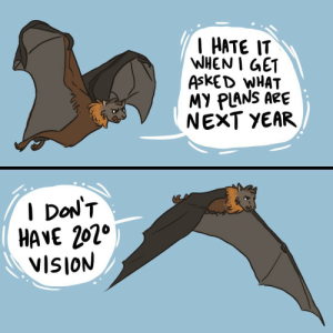 Vision, Next, and Will: HATE IT  WHENI GET  AskED WHAT  MY PLANS ARE  NEXT YEAR  I DoN'T  HAVE 202°  VISION [OC] This joke will only last until December 31st, 2019 so get it while it's hot.