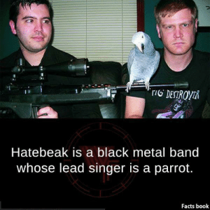 Facts Book: Hatebeak is a black metal band  whose lead singer is a parrot.  Facts book