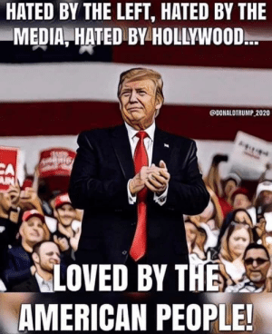 Does this count?: HATED BY THE LEFT, HATED BY THE  MEDIA, HATED BY HOLLYWOOD.  @DONALDTRUMP 2020  CA  AN  LOVED BY THE  AMERICAN PEOPLE! Does this count?