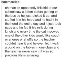 Apparently, Life, and Love: hatemarriied:  oh man ok apparently this kid at our  school saw a kitten before getting orn  the bus so he just. picked it up. and  stuffed it in his hood and he had it in  the hood the entire day and it just took  naps and he fed it his milk during  lunch and every time the cat meowed  one of the other kids would like cough  or sneeze or shuffle so the teacher  couldnt hear it and he even let it walk  around on the tables in one class and  the teacher never saw it it was so  precious life is amazing i love kittens