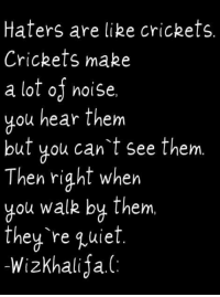 http://t.co/kXTXmC7wUp: Haters are like crickets.  Crickets make  a lot of noise,  you hear them  but you can't see them.  Then right when  you walk by them.  they're quiet  -WizKhalija. http://t.co/kXTXmC7wUp