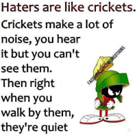 crickets: Haters are like crickets.  Crickets make a lot of  noise, you hear  it but you can't  see them.  Then right  when you  walk by them,  they're quiet