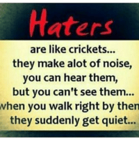 crickets: Haters  are like crickets...  they make alot of noise,  you can hear them,  but you can't see them...  when you walk right by then  they suddenly get quiet...