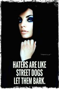 Page Love ♡: HATERS ARE LIKE  STREET DOGS  LET THEM BARK Page Love ♡