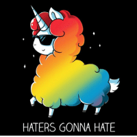 Just be your fabulous self!: HATERS GONNA HATE Just be your fabulous self!