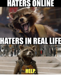 "Life, Memes, and Black: HATERS ONLINE  HATERS IN REAL LIFE  GIW LACK PANTHER  HELP Credit: ""w_black_panther"" (IG)   #RocketRaccoon"