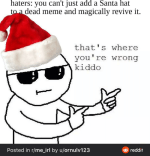 Me_irl: haters: you can't just add a Santa hat  to a dead meme and magically revive it.  that's where  you're wrong  kiddo  Posted in r/me_irl by u/ornulv123  reddit Me_irl