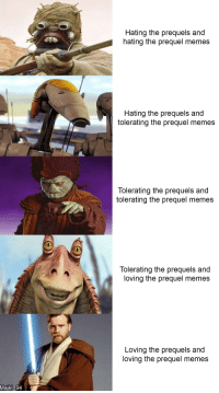 prequel: Hating the prequels and  hating the prequel memes  Hating the prequels and  tolerating the prequel memes  Tolerating the prequels and  tolerating the prequel memes  Tolerating the prequels and  loving the prequel memes  Loving the prequels and  loving the prequel memes  Majkl _94
