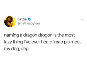 Lazy, Dragon, and Dog: hattie  @hattiesoykan  naming a dragon drogon is the most  lazy thing 've ever heard Imao pls meet  my dog, deg Hes not wrong