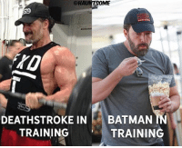 Batman, Meme, and Memes: @HAU  DEATHSTROKE IN BATMAN IN  TRAINING  TRAINING Tb to one of my driest and most popular meme I made 😂