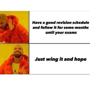 Tumblr, Good, and Http: Have a good revision schedule  and follow it for some months  until your exams  Just wing it and hope Follow us @studentlifeproblems