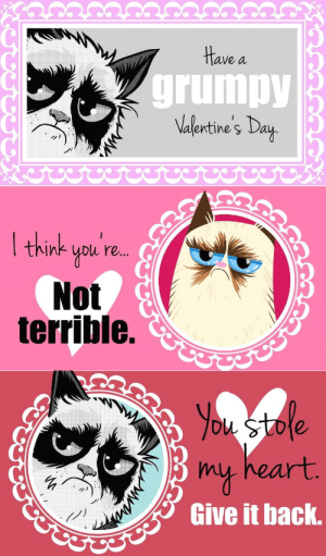 Anti Valentines Day Meme - Novickforsenate.org: Have a  grumpy  Valentine's Day  I think  you'r..  Not  terrible.  You stole  heart.  Pmy  Give it back. Anti Valentines Day Meme - Novickforsenate.org