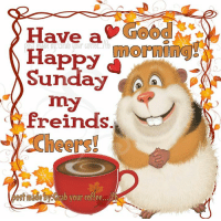 Memes, Good Morning, and Coffee: Have a  morning  Sunday  my  freinds.  ebACHab your coffee... Good morning peeps!