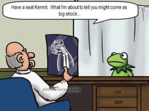 Thank you doctor, very cool: Have a seat Kermit What I'm about to tell you might come as  big shock  90  (C  paisbolocos.com Thank you doctor, very cool