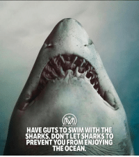 "Be a shark. 👇Comment ""shark"" letter by letter BACKWARDS for a chance of a follow back and a like bomb!🔥 shark hustle hungry success millionairementor: HAVE GUTS TO SWIM WITH THE  SHARKS. DON'TLET SHARKSTO  PREVENTYOU FROMENJOYING  THE OCEAN. Be a shark. 👇Comment ""shark"" letter by letter BACKWARDS for a chance of a follow back and a like bomb!🔥 shark hustle hungry success millionairementor"