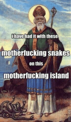 Ireland, Snakes, and St Patrick: have had it with these  mothertucking snakes  on this  mothertucking island St. Patrick rids Ireland of snakes (415-460 AD)