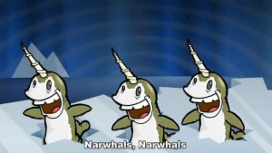 Have some narwhals in these trying times: Have some narwhals in these trying times