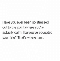 I'm at this point 😂 https://t.co/lVYY2b6QX3: Have you ever been so stressed  out to the point where you're  actually calm, like you've accepted  your fate? That's where l am I'm at this point 😂 https://t.co/lVYY2b6QX3