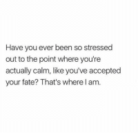 Mood: Have you ever been so stressed  out to the point where you're  actually calm, like you've accepted  your fate? That's where l am Mood