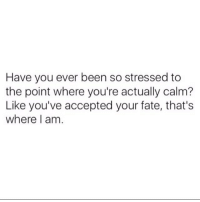 Memes, Fate, and Accepted: Have you ever been so stressed to  the point where you're actually calm?  Like you've accepted your fate, that's  where I am Why yes...yes I have. 😌 SoBasicICantEven