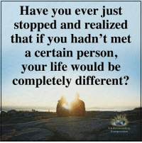 Life, Memes, and Compassion: Have you ever just  stopped and realized  that if you hadn't met  a certain person,  vour life would be  completely different?  Understanding  Compassion Understanding Compassion ❤️
